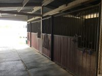2471 Stardust – Horse property