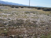 2051 S. SYCAMORE AVE. BUILDABLE MULTI UNIT LOT